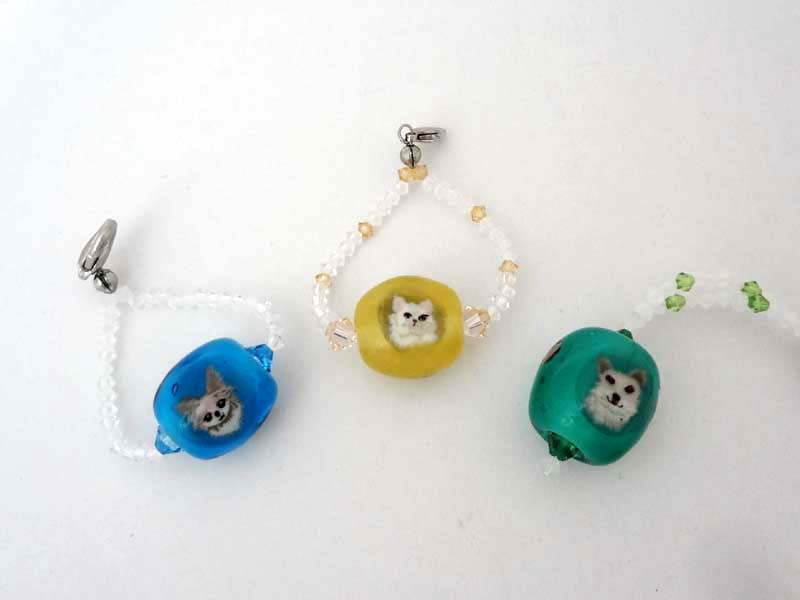 yonezawa-10犬と猫